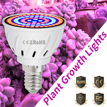 E27 Grow LED Full Spectrum Light E14 Plants Lamp GU10 220V Growing MR16 48 60 80led Indoor Tent B22