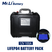 Lifepo4 12V 100Ah Rechargeable Battery Pack With Build in BMS For Solar System Boat Power Supply EV RV Refrigerator