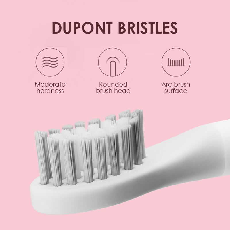WHITE Sonic Electric Toothbrush Ultrasonic Automatic Tooth Brush Rechargeable Waterproof