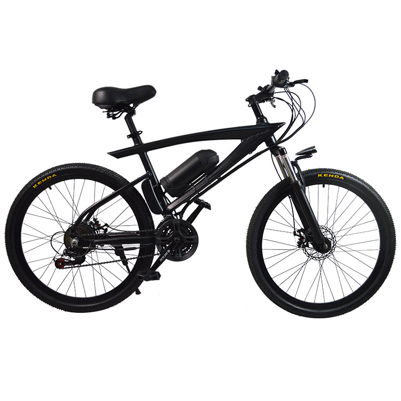 New electric car 36V adult lithium battery boost two wheeled battery snow beach mountain font b