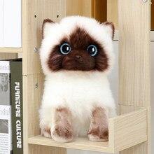 20/26cm simulação siamês gato brinquedo de pelúcia azul lantejoulas olhos bonecas marrom e branco rosto ragdoll gatos decoração da casa presente bonito para o bebê