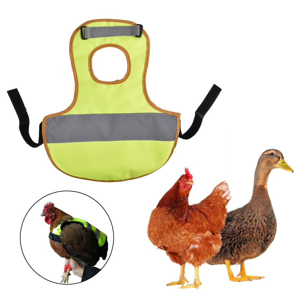 Adjustable Chicken Vest font b Pet b font Reflective Vest Chicken Clothes Poultry Hen Saddle Apron