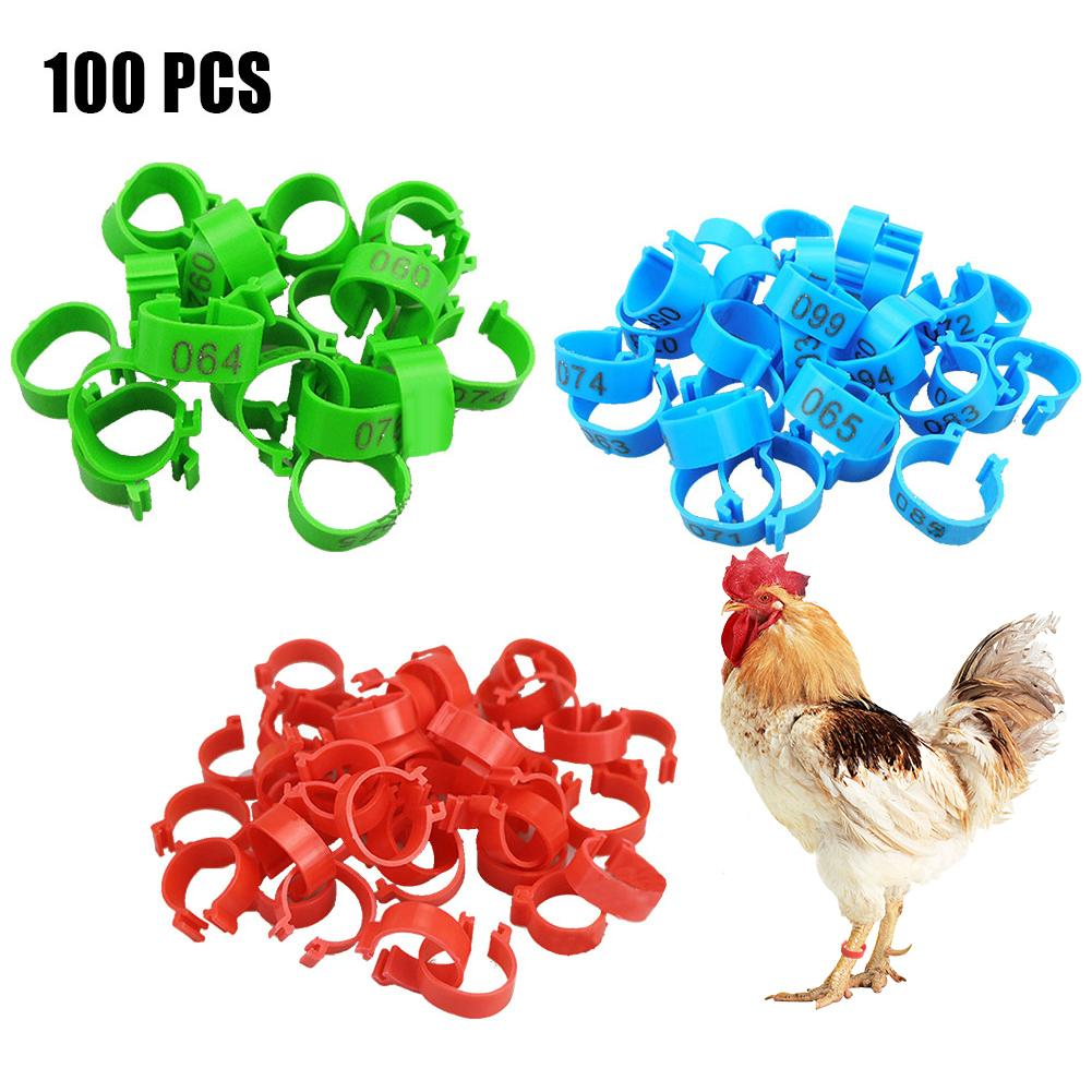 100 Pcs Chicken Leg Bands 20 Mm Chicken Poultry Rings 3 Colors Pigeon Geese Quail Bird Ring Carry Tools Feeding Number Tag