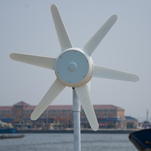 50W small windmill with inner controller, 12V/24V DC wind turbine generator CE certification