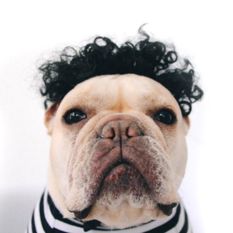 Забавные волосы головной убор имитации парик для собак и кошек для мелких животных Клоун Хеллоуин костюм афро парик-коса товары для домашни...
