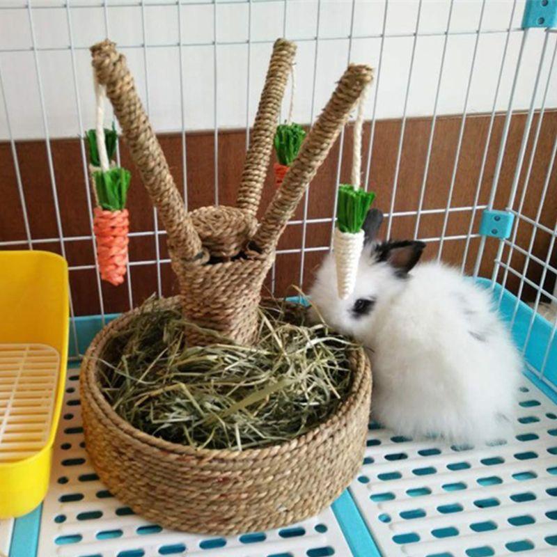 Маленький кролик для активности животных, забавная игрушка морковь, дерево, борода, грызун, голландский