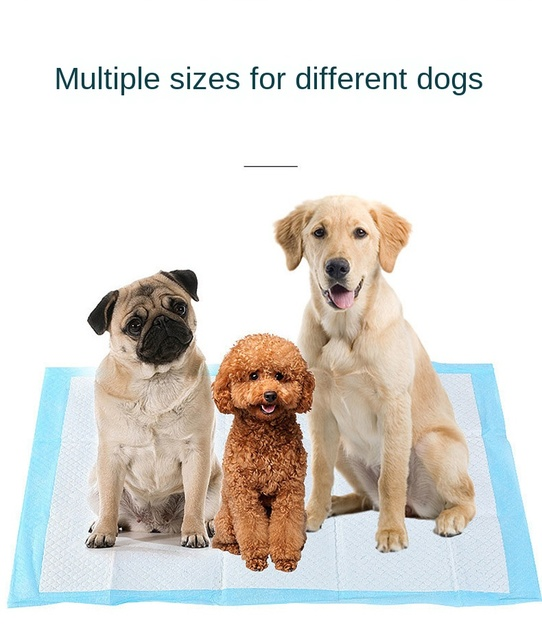 50/100pcs Dog Training Pee Pads Super Absorbent Pet Diaper  Disposable Healthy Clean Nappy Mat for Pets Dairy Diaper Supplies | Happy Baby Mama