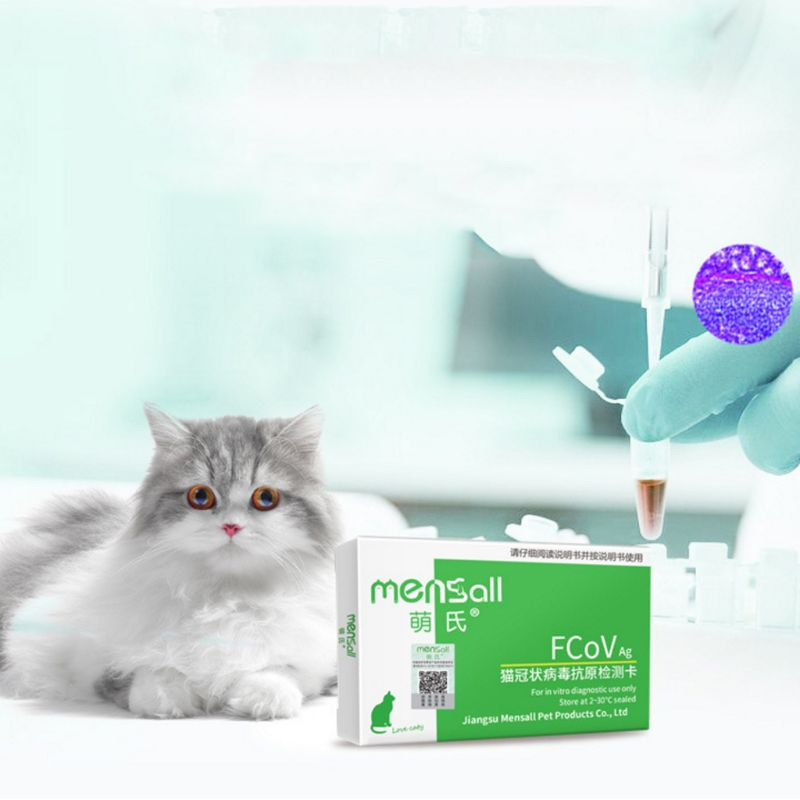 test for coronavirus in cats