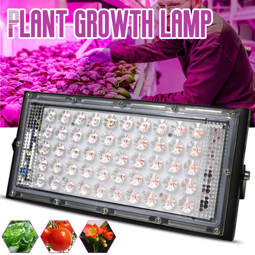 Phyto Lamp 50W LED Plant Growth Fill-in Lamp AC 220V Plant Floodlight Greenhouse Plant Hydroponic Plant Spotlight