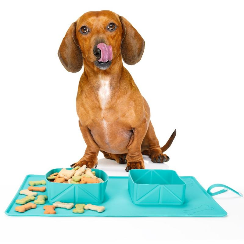 dog enjoying eating from collapsible roll out place mat with bowls