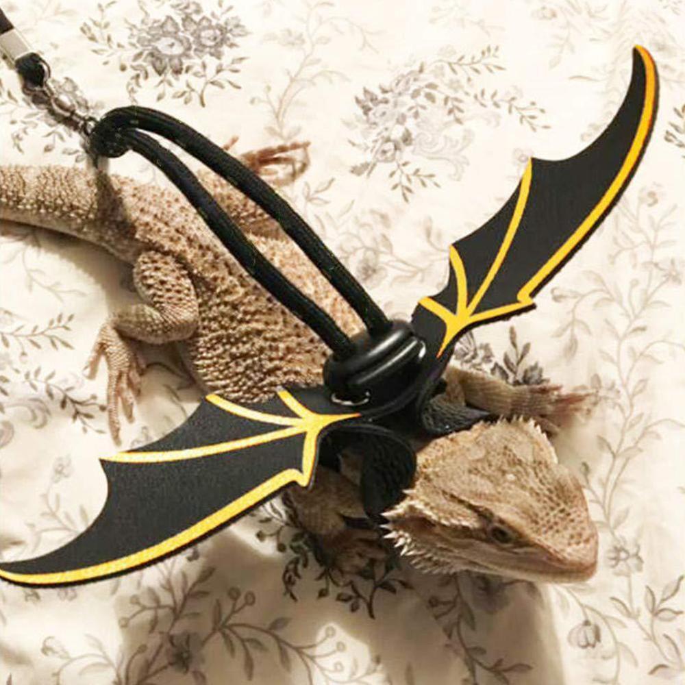 Lizard Reptile Pet Leash Transportation Outdoor Walking Harness Dragon Bearded Adjustable Rope