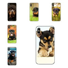 Soft Transparent Shell Covers For iPod Touch Apple iPhone 4 4S 5 5S SE 5C 6 6S 7 8 X XR XS Plus MAX Rottweiler dog puppies(China)