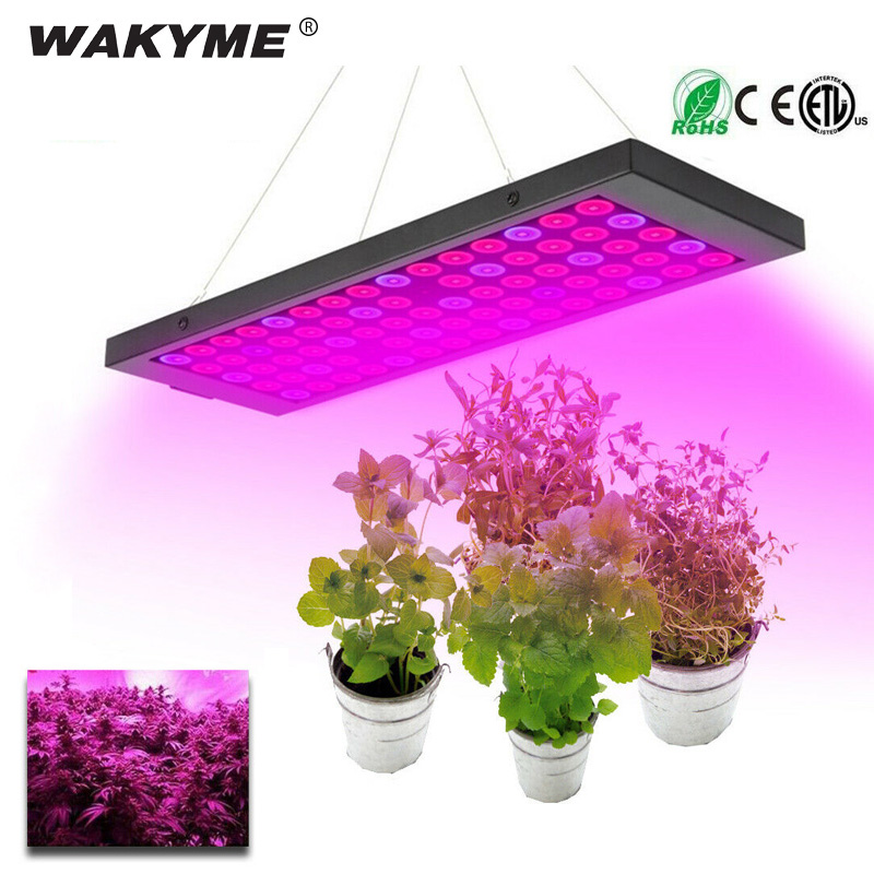 WAKYME 40W LED Grow Light Phyto Lamp Full Spectrum Plant Lamp Growing Light for Vertical
