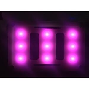 Image 5 - Aputure AL M9 Ulanzi  Led Light 12 Color Correction Gels Filter Card Lighting Diffuser Pocket Photographic LED Video Light M9