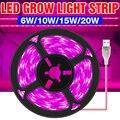 Светодиодная фитолампа полного спектра с USB, 5 В, световая лента для выращивания растений, 0,5 м, 1 м, 2 м, 3 м, 2835 SMD, Светодиодная лента для растени...
