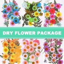Mélange de fleurs séchées et pressées, Collection de décorations florales, artisanat cadeau, bricolage, GHS99