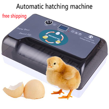 12-Egg Automatic incubator hatching machine Adjustable Egg Tray Practical Fully Poultry Incubator Set