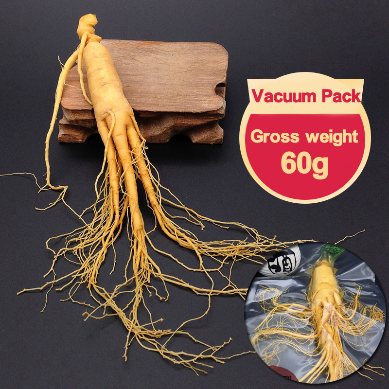 Top Grade Fresh Ginseng Root Vacuum Pack Panax Fresh Ginseng Root