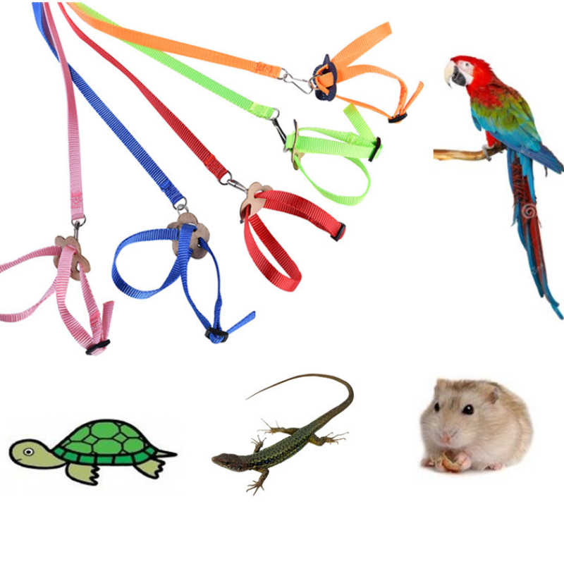 Adjustable Burung Beo Burung Harness Tali Anti-Gigitan Training Tali Outdoor Terbang Harness Tali Hamster Turtle Kadal Traksi Tali