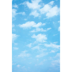 Image 4 - Funnytree blue sky photography baby shower backdrop cloud party decor Rainbow newborn birthday background photo studio photozone
