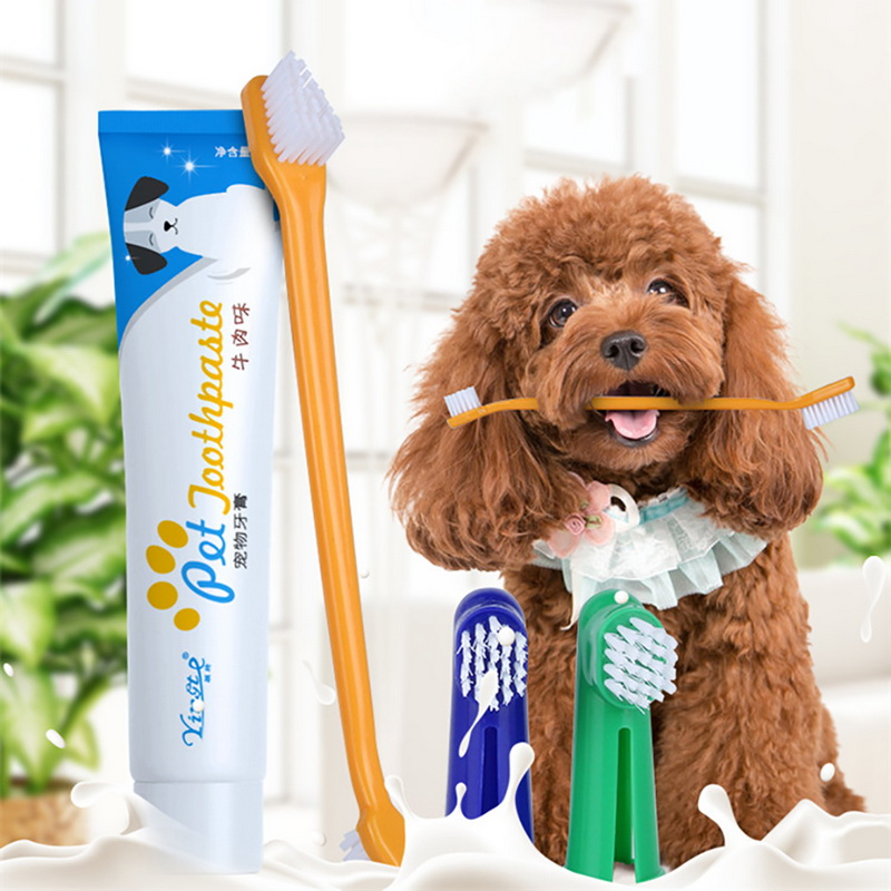 Pet Dog Toothbrush Toothpaste Set Pet Brush For Small Medium Large Dogs Teeth Care Pet Accessories Random Color image