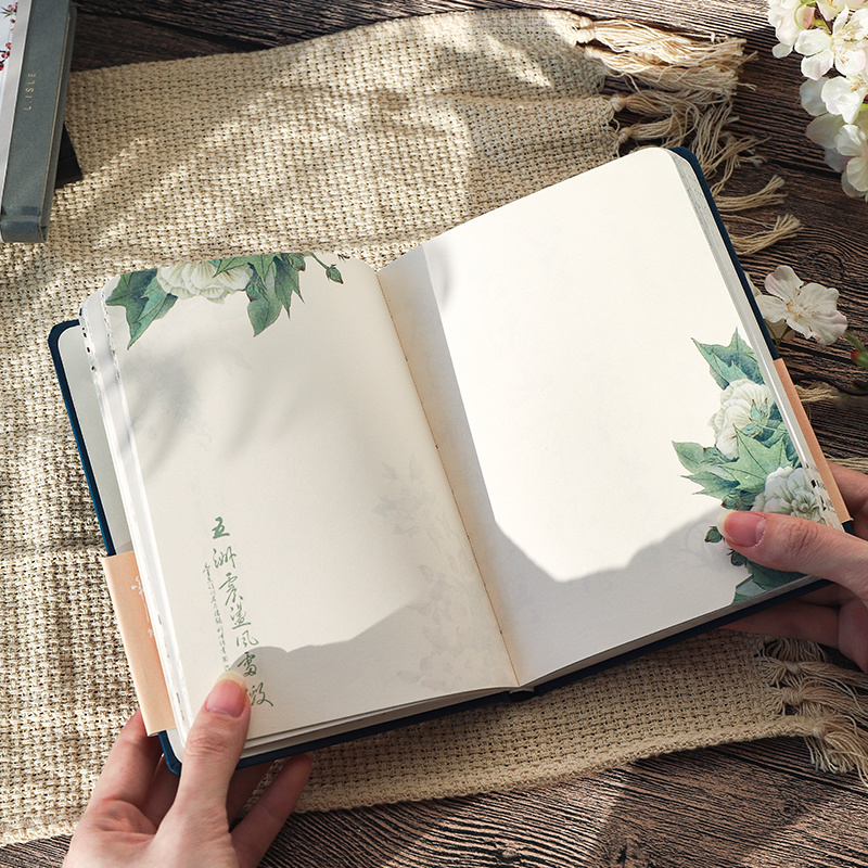 caderno capa dura criativo diario livros 02