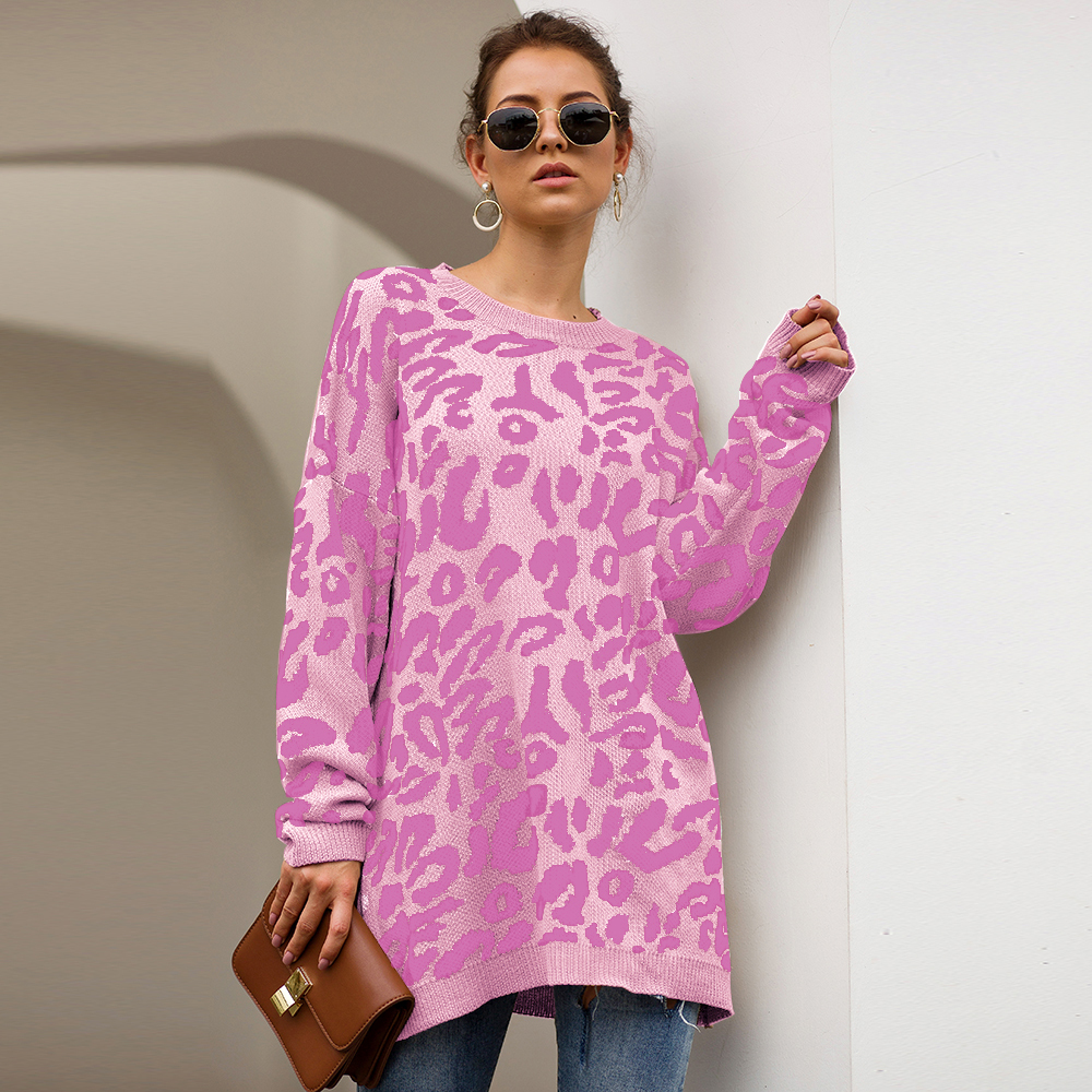Dilusoo Leopard Print Winter Knitted Sweater Women O-neck Long Sleeve Loose Sweaters Female 19 Casual Autumn Overalls Sweaters 9