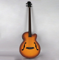 professional fretless electric acoustic bass guitar with turner EQ