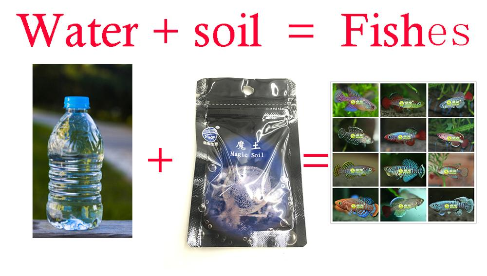 Soil + Water = Fishes