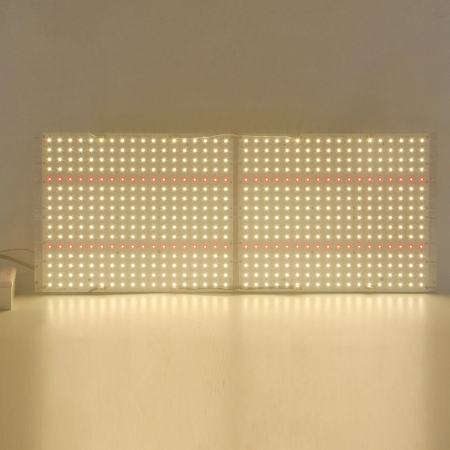 LED élèvent le LED UV dir de Dimmable de conseil quantique élèvent la lumière QB288 LM301B 120W 240W 320W 480W avec le lecteur de Meanwell 5 ans de garantie