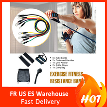 Resistance Bands Set (11pcs) for Physical Therapy, Resistance Training, Home Workouts oushi multifunctional resistance bands 11pcs set