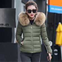 Cotton clothing 2019 winter new women's cotton coat women's short large fur collar hooded Slim cotto