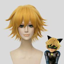 Perruques de Cosplay synthétiques chat Noir, 30cm, courtes, dorées, résistantes à la chaleur