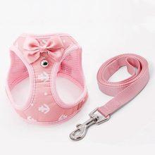 Gilet de harnais en maille respirante pour chat, ensemble de laisses avec cloche, accessoires mignons à nœud papillon pour petits chiens et chatons