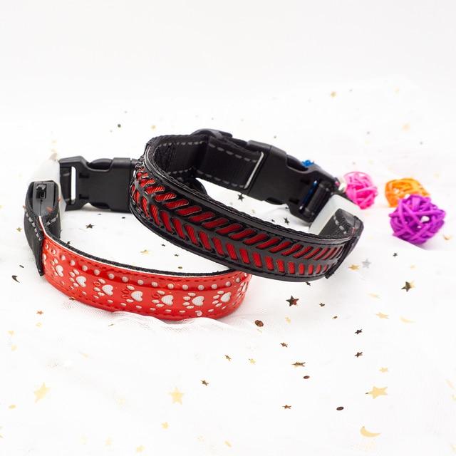 "Luminous Flashing Night Time Walking Pup Collar "" Pets Alpha Says, "" Safety First! ""   4"