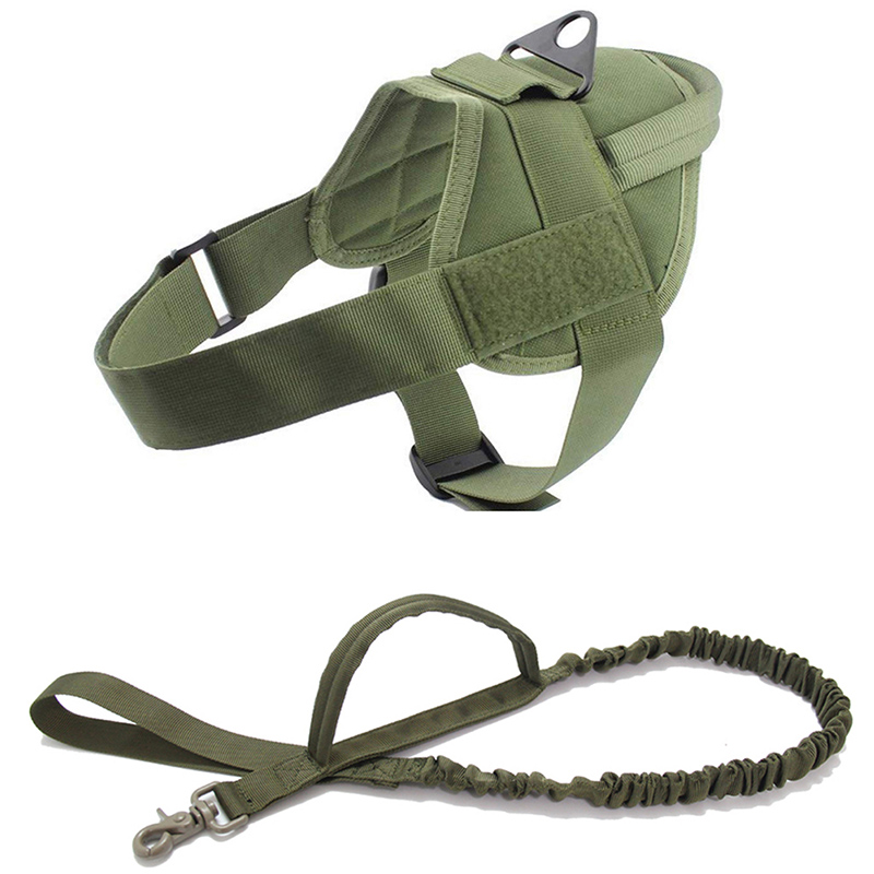 Green Harness Leash