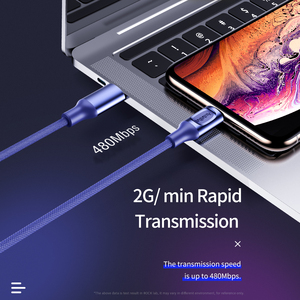 Image 5 - Rock 18W MFi PD 유형 C 번개 충전 케이블 iPhone 12 Pro Max 12 Mini 11 Pro Xs X 8 Plus Macbook USB C 충전기 케이블