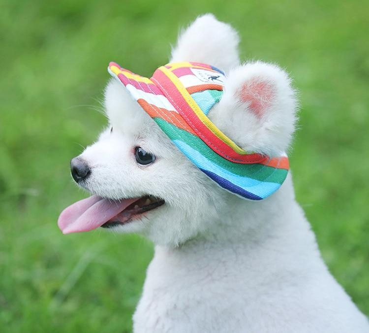 Sunny Pups Doggy Cap