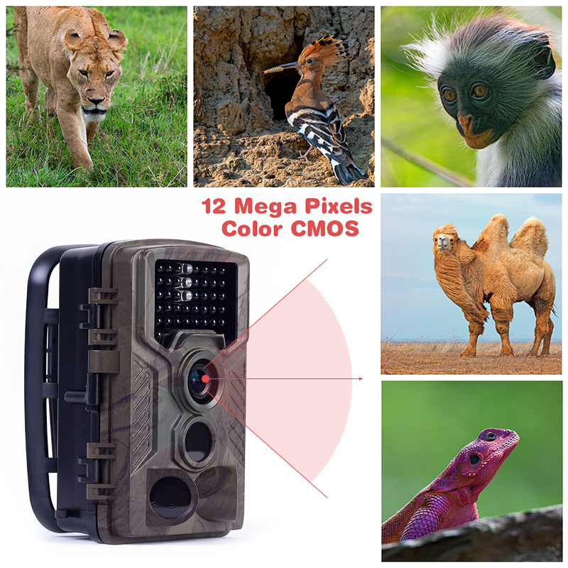 Hunting Trail Camera <font><b>HC800M</b></font> 2G SMS MMS Photo Traps Wild Hunter 12MP 1080P Night Vision Infrared Video Surveillance Wildlife Cams image