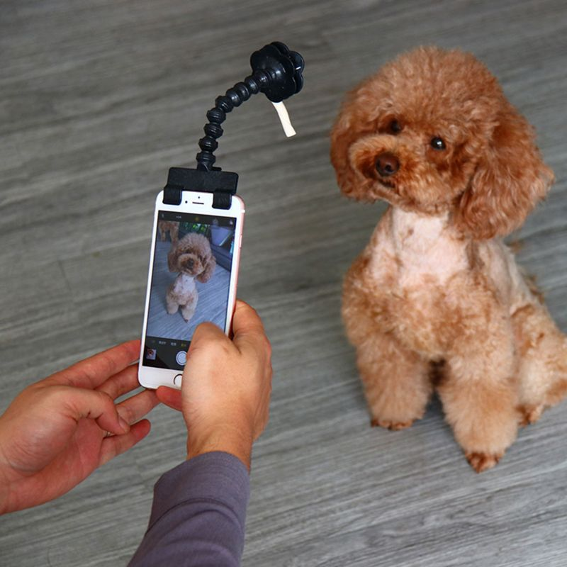 Adjustable Pet Selfie Stick Phone Clip Holder for Pets Dog Cat for iPhone Samsung and Most Smartphones Tablets Devices Hot W91A image