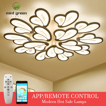 Modern LED ceiling lamp dimmable APP remote control lamp bedroom living room ceiling lamp