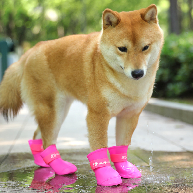 Lady Rain Boot Mid Calf Anti-Skid Waterproof  Rubber Pull On Cute Dog Printed K8