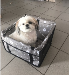 Pet Dog Car Carrier Seat Bag Waterproof Basket Folding Hammock Pet Carriers Bag For Small Cat Dogs Safety Travelling Mesh 38
