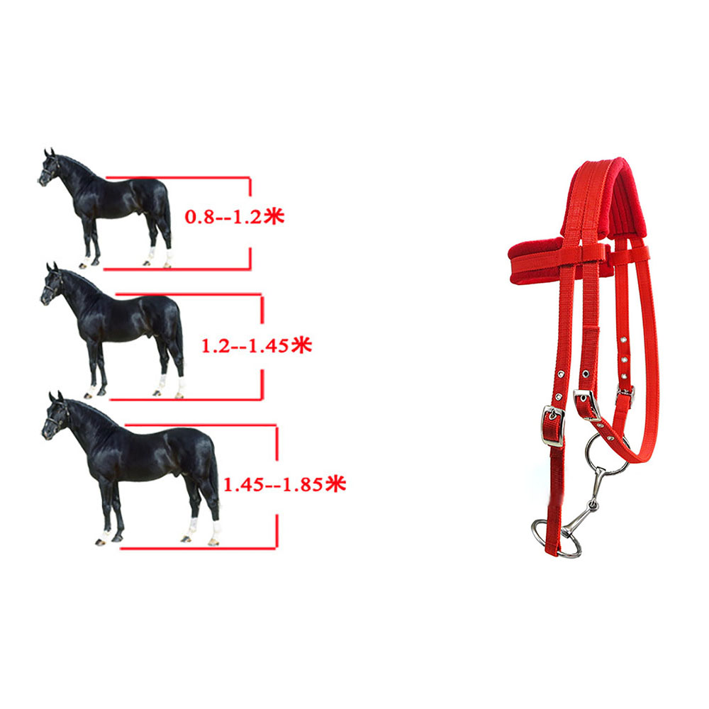 Horse Bridle Wear Resistant Horse Halter Adjustable Comfortable Outdoor Camping Soft Thicken Wear Resistant Equestrian Device