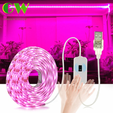 LED לגדול אור ספקטרום מלא USB לגדול אור רצועת 0.5m 1m 2m 3m 2835 SMD DC5V LED פיטו קלטת עבור צמחי זרעי פרחים חממות