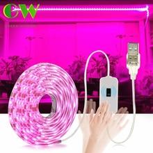 LED ışık büyümek tam spektrum USB büyümek ışık şeridi 0.5m 1m 2m 3m 2835 SMD DC5V LED phyto bant tohumlu bitkiler çiçekler seralar