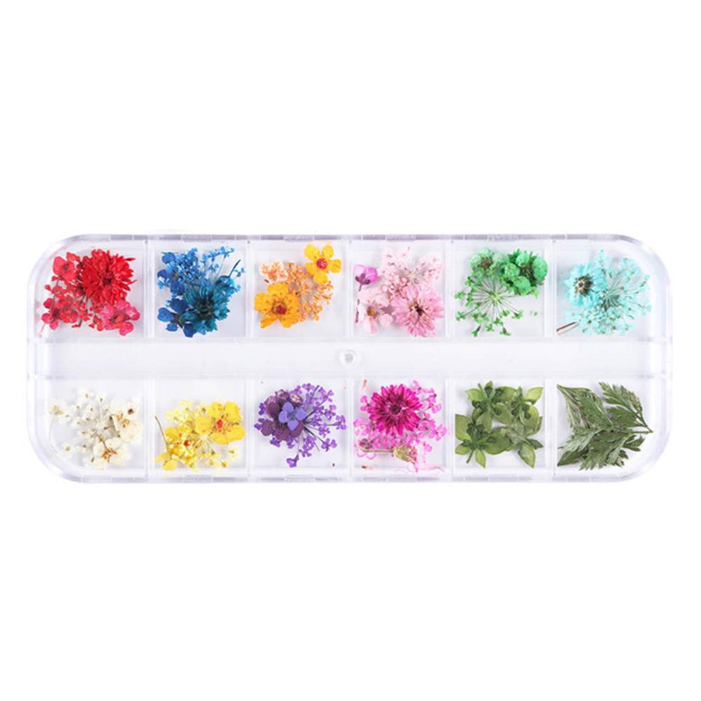 12 Grid/Box Crystal Epoxy Filler Dry Flower Handmade Flowers DIY Craft Silicone Molds UV Resin Filling Material Decoration Acces