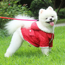 Новая одежда для собак; Сезон осень зима; Бархатная теплая щенков