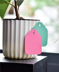 Image 4 - 100 pcs Plant Hanging PVC Tags Tree Labels Waterproof Strip Line Gardening Labels Multi Colored For garden potted plants