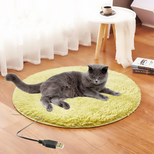 Sleeping-Bed Electric-Blanket Heated-Pad Dog-Heating-Mat USB Cat Pet for Small Anti-Scratch
